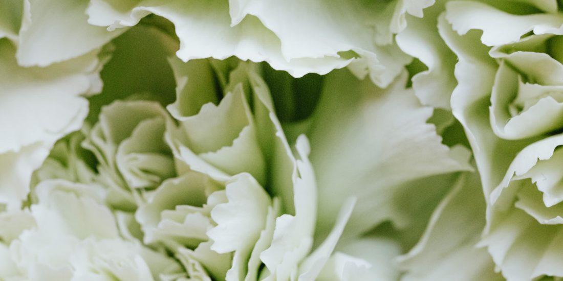 brautatelier ried-flower love-pexels-karolina-grabowska-4622808-min